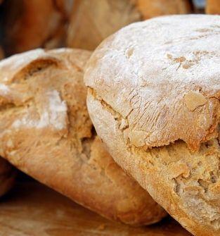 Chleb z kwiatu czarnego bzu