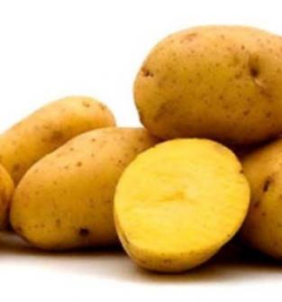 Ziemniaki Gwiazda
